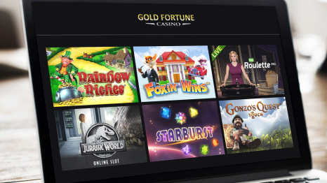 Gold Fortune Casino software and game variety